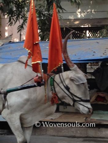 Wovensouls-Mumbai-local-trains-blog-7