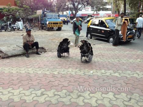 Wovensouls-Mumbai-local-trains-blog-9