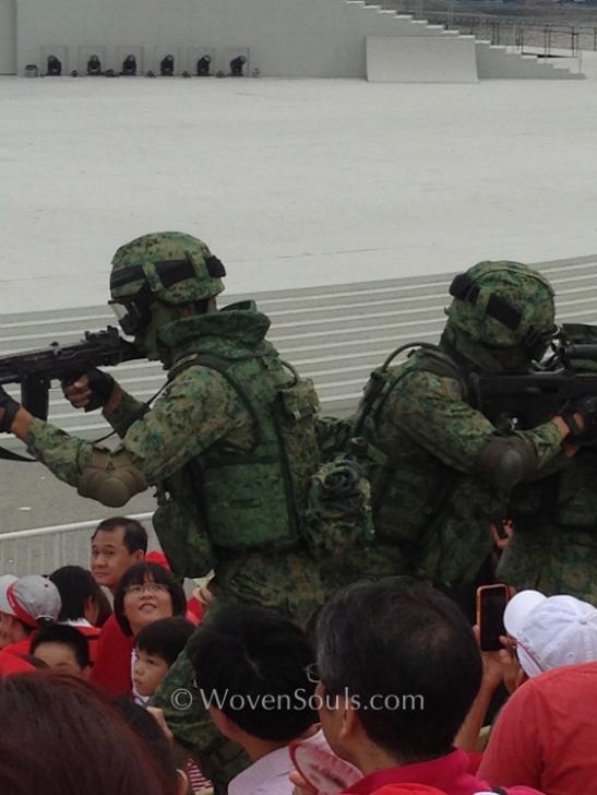 National Day Parade 2013, Singapore
