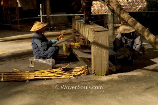 Ryukyu-sugarcane extraction--4