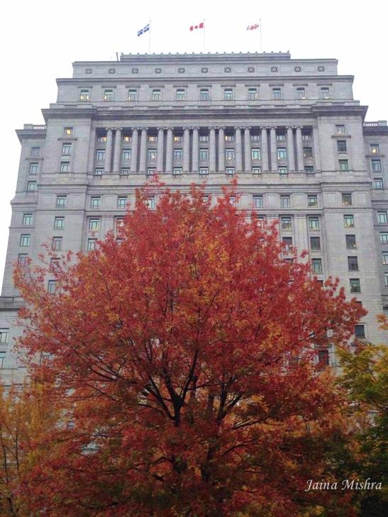 Colors of Fall - Montreal -Jaina Mishra - 2014