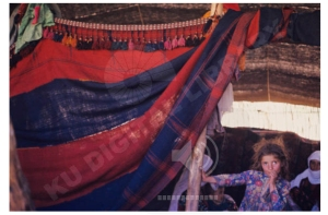 nomadic tent divider