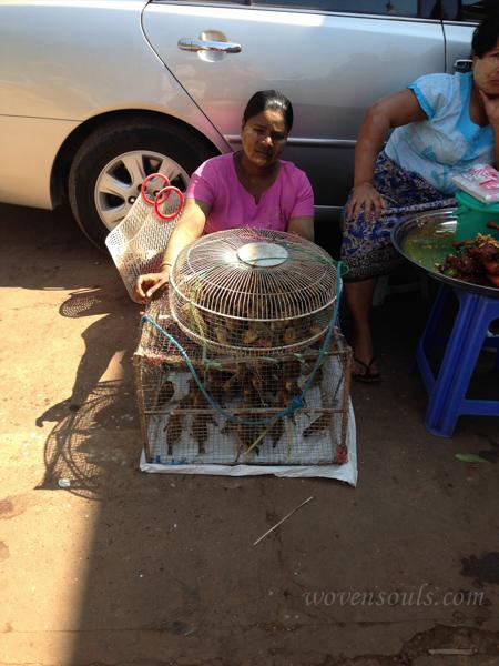 Bagu Burma IMG_5454-2