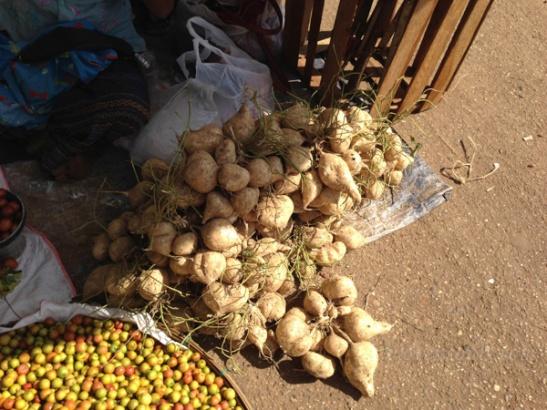 Bagu Burma IMG_5497-2