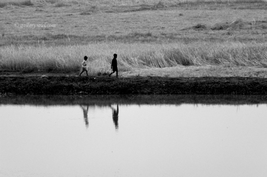 CHILDREN WALKING IN A FIELD, ASSAM